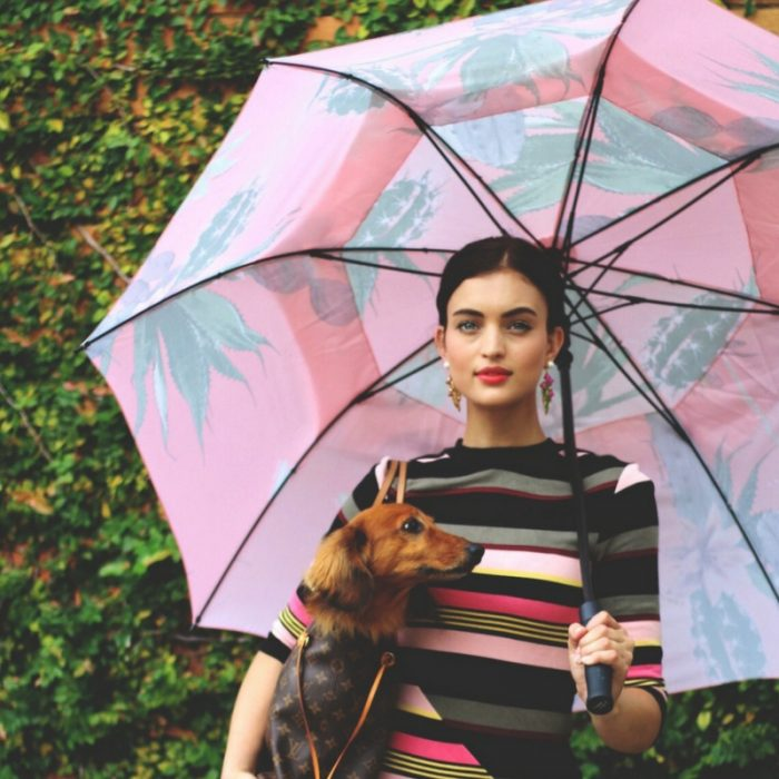 A woman with a dachshund in a hand bag holds a large rain umbrella with a pink and green cactus print. The black hardware can be seen.